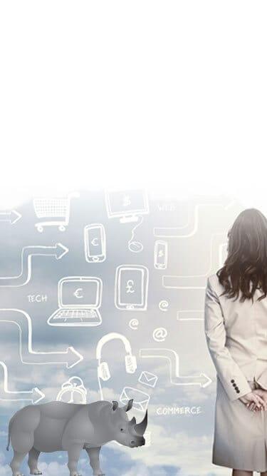 Commerce Cloud Consultants