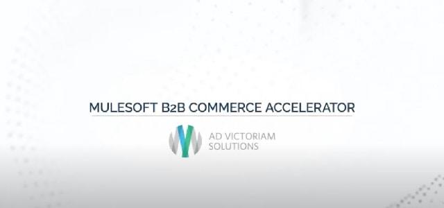 MuleSoft B2B Accelerator