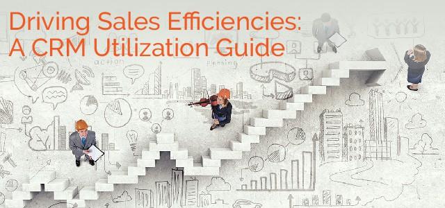Driving Sales Efficiencies: A CRM Utilization Guide